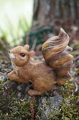 1316 Figurine Statuette Ecureuil Montagne Animal