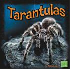 Tarantulas by Molly Kolpin (Hardback, 2010)