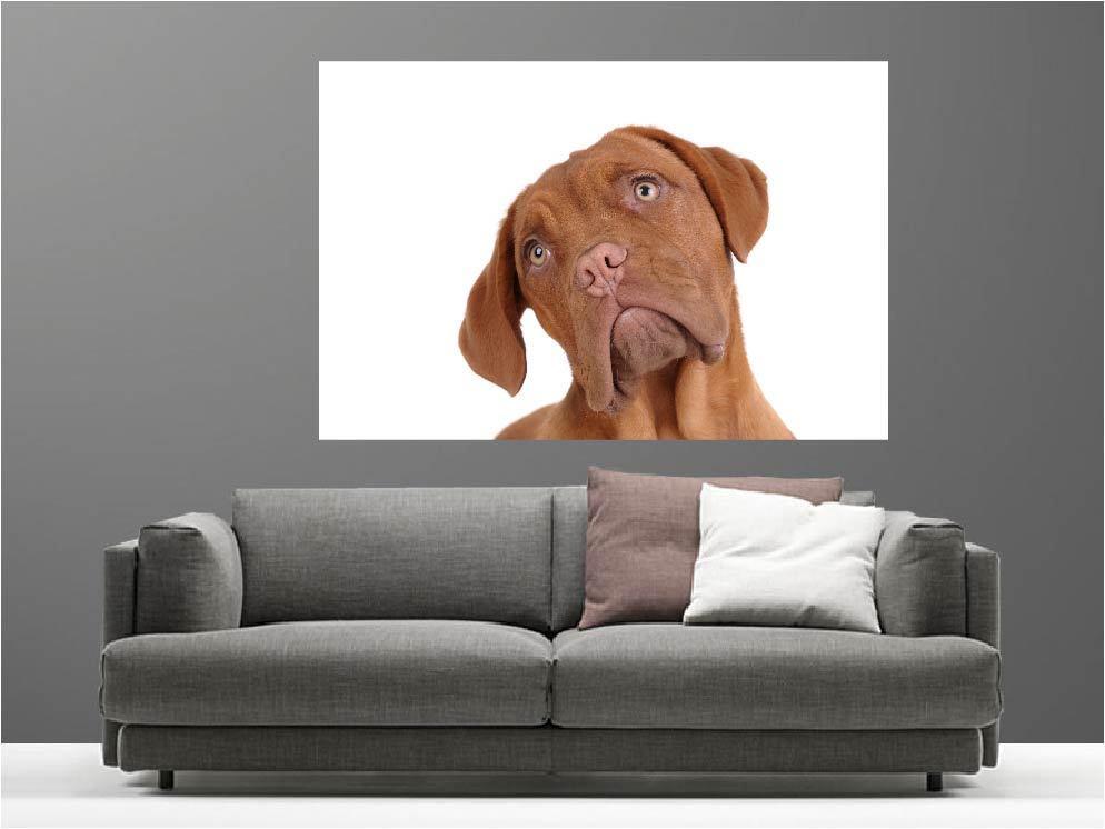 Gemälde Gemälde Deko Set Hund Ref 14144719