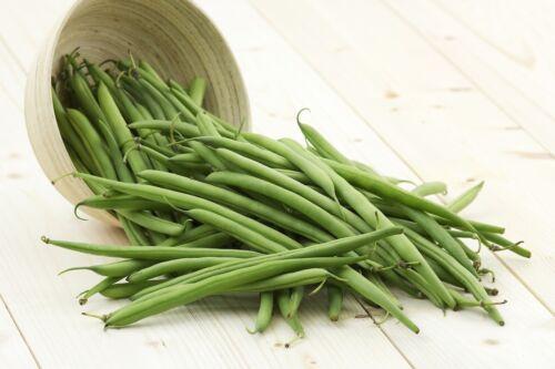 "seeds disease resistant variety tasty French bean /""Ferrari/"""