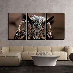 Wall26-Great-Horned-Owl-Portrait-Canvas-Art-Wall-Decor-16-034-x24-034-x3-Panels