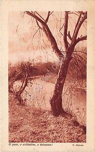 Cartolina-Postcard-alberi-e-ruscello-poesia-T-Praga-1937