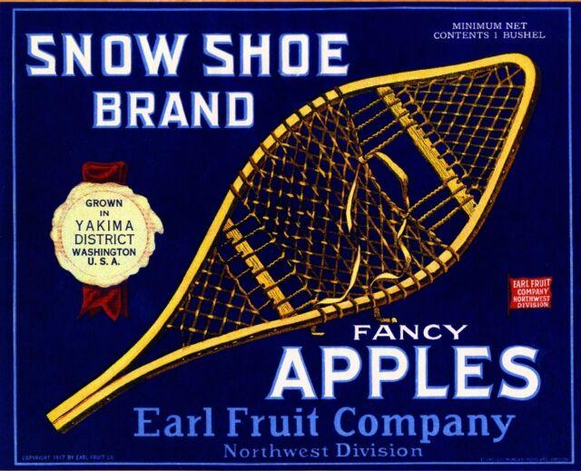 Yakima Washington State Snow Owl Blue Apple Fruit Crate Label Art Print