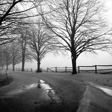 "Harold Silverman, ""After the Rain"", open edition digital print, B&W photo"
