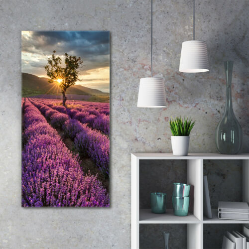 Wandbild Kunst-Druck auf Hart-Glas hochkant 60x120 Lavendelfeld
