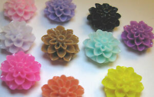 20-Resin-Chrysanthemum-Cabochons-15mm-All-Colours