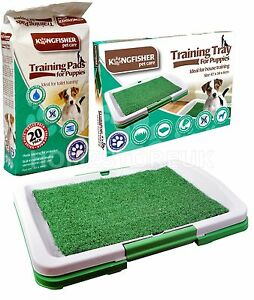 Dog Puppy Potty Training Absorbent Pads Or Plastic Toilet