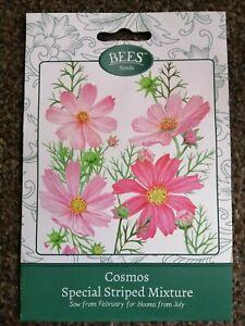 310 seeds Cosmos Polidor Mixture Cosmos Sulphureus ANNUAL FLOWER