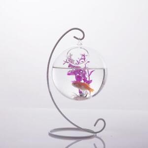 Vase-de-Verre-Boule-a-Suspendre-Bouteille-Decor-pr-Maison-10cm-Transparent