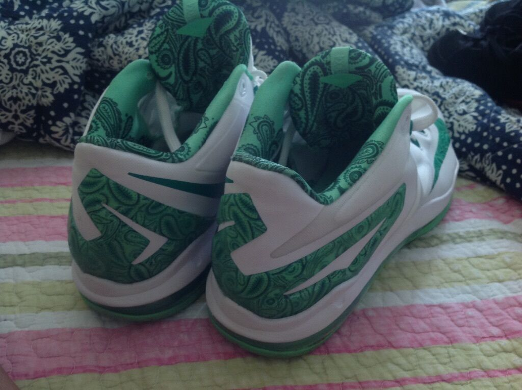 Lebron 11 low easters size 11