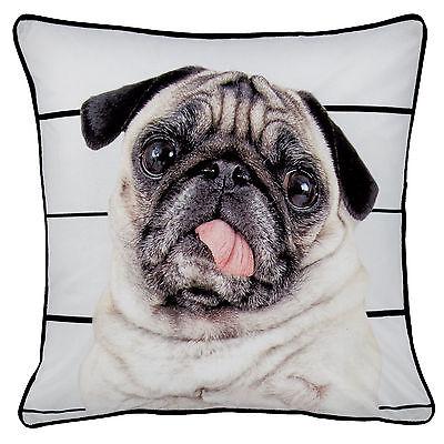 Catherine Lansfield Designer Pug Life Black Brown Velvet 43x43cm Cushion Cover