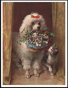 POODLE WITH CAT AND KITTENS IN A BASKET VINTAGE STYLE DOG ART PRINT POSTER