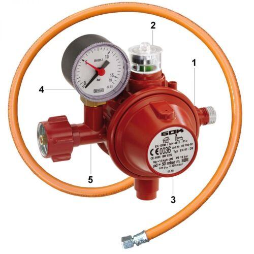 Gastechnik im Set Haushaltsregler mit TAE Gas 50 mbar mit Überdrucksicherung