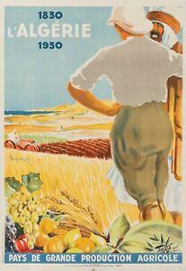 Original-colonial-Poster-Dormoy-Algerie-1830-1930-terres-agricoles-1930