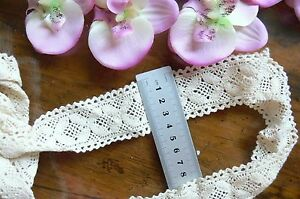 Cluny-Cotton-Insert-Lace-CHAMPAGNE-CREAM-40mmWide-3Metre-Lengths-ft261-Sunrise