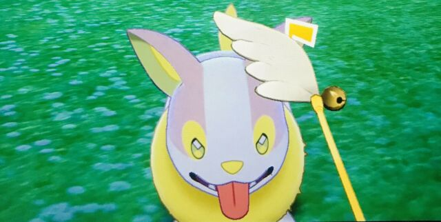 Pokemon Sword And Shield Shiny Yamper Swsh Br Pokemon Camp Ebay Yamper has an organ that generates electricity from the base of its tail when it runs. ebay