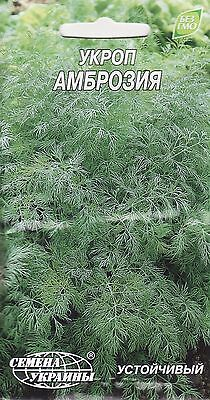 Herb Seeds Dill Bush Heirloom Seed