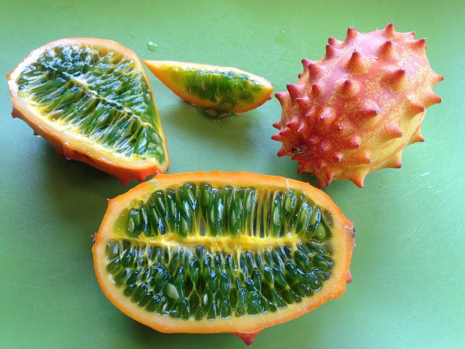 kiwano melon-Horn melon-jelly melon-20 Finest Seeds