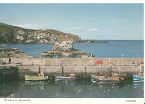 Scotland-Postcard-St-Abbs-Near-Eyemouth-Berwickshire-Ref-AB3167