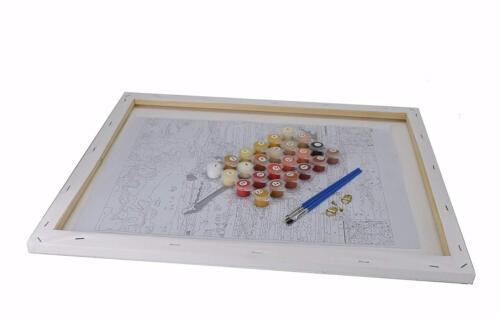 Malen nach Zahlen 40 x 50 cm mit Holzrahmen Komplettset  G117