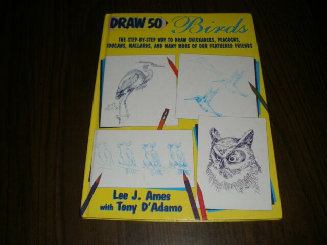DRAW 50 BIRDS STEP BY STEP AMES & D'ADAMO 1996 1ST HARD COVER (B5)
