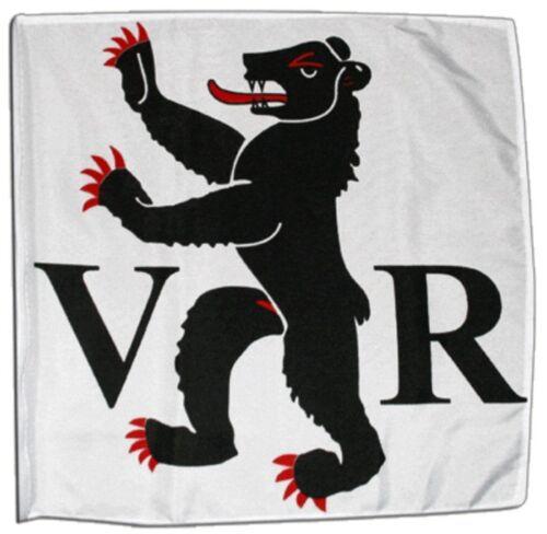 SUISSE CANTON APPENZELL-AUSSERRHODEN Bannière Appenzell drapeaux drapeaux 30x30cm