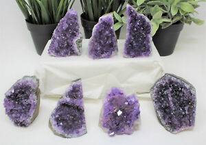 Stunning-LARGE-Amethyst-Cut-Base-Cluster-Crystal-Quartz-Geode-8-12-oz