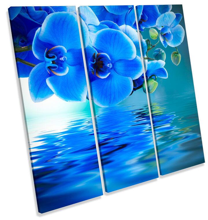Fiore Floreale Floreale Floreale riflessione TREBLE TELA Wall Art Quadrato foto stampa be8f91