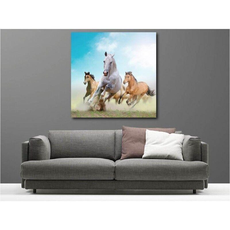 Wandbild Leinwand Deko Pferde 111340229