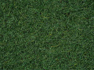 NOCH-08320-Fine-Turf-Grass-Peaty-Soil-2-5-MM-Contents-20g-100g-11-50-Euro