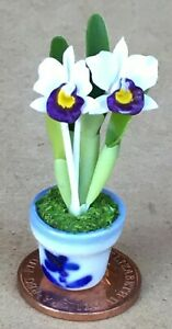 1:12 Scale White /& Purple Orchid Tumdee Dolls House Flower Garden Accessory 4s