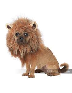 California-Costumes-King-Of-The-Jungle-Lion-Dog-Pet-Halloween-Costume-PET20166