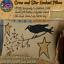 STARS /& PIP BERRY HOOKED PILLOW Farmhouse Primitive Colonial Folk Art CROW