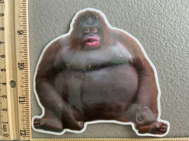 New Uh Oh Stinky Monke Orangutan Big Twitter Meme Vinyl ...
