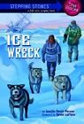 Ice Wreck by Lucille Recht Penner (Paperback, 2001)