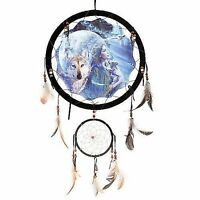 13 Indian Girl Wolf Cub Moon Dream Catcher Wall Hang Feathers Gift Pretty 1377