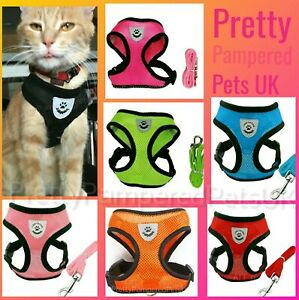 Cat-Harness-and-Lead-Starter-Set-Small-Pets-Puppy-Dog-Kitten-Coat-Chihuahua-UK