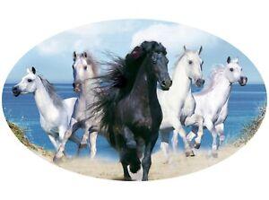 Motor-home-Caravan-Camper-Horse-box-Horses-Sticker-Mural-Decal-Graphic-mh1-40