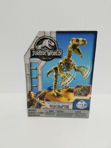 "Jurassic World STEM Fossil Strikers Stygimoloch /""Stiggy/"" Kit 2018 NIB//Sealed"