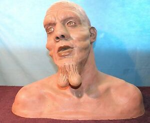 Creepy Guy Balls Testicles On His Chin Bust Movie Prop Men In