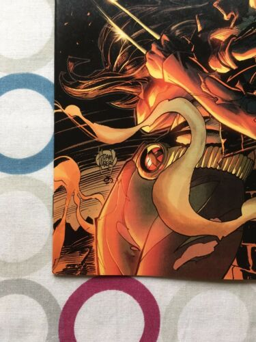 Ms Marvel #17 » NM » Kubert X-23 Incentive Variant » 1st Print » Marvel