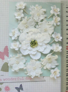 WHITE-Magnolia-Apple-amp-Cherry-Blossoms-16-Flowers-PAPER-25-75mm-GT-Draw-A