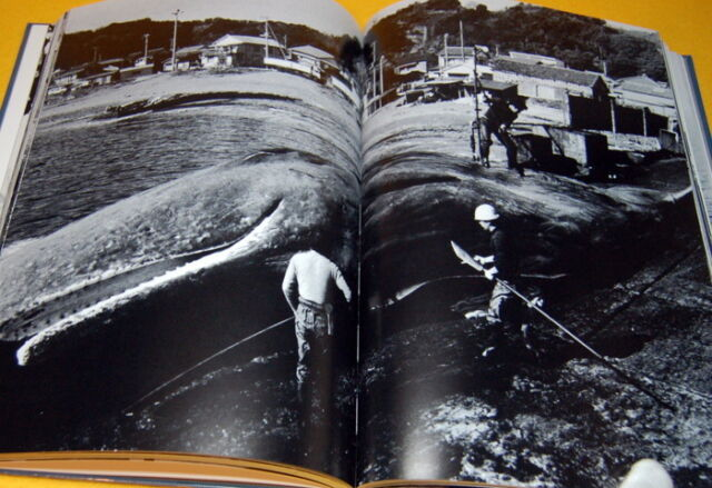 Dismantling of the whale book japan japanese whaling meat fishing iwc #0167