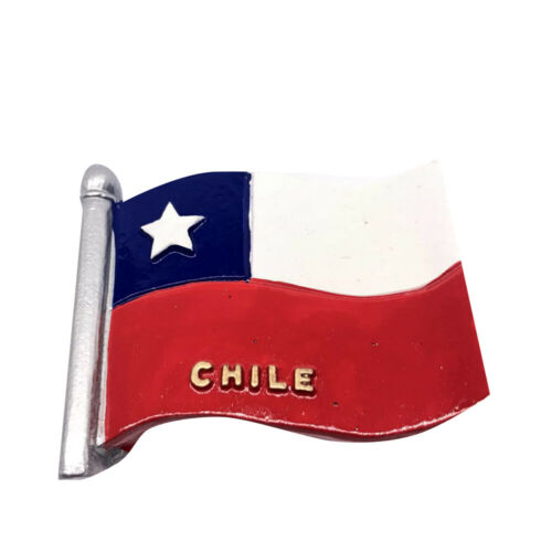 Viele Staaten Fahne Kühlschrankmagnete Flagge Fridge Magneten Reise Geschenk DIY