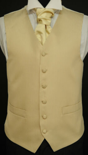 party Coffee and gold striped waistcoat dress wedding suit W-456