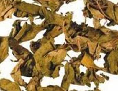 Gymnema Sylvestre-Suger Destroyer-Periploca of the Wood-Gudmar-Dry LEAVES 50gs