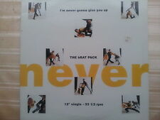 The Brat Pack-I 'm Never Gonna Give You Up