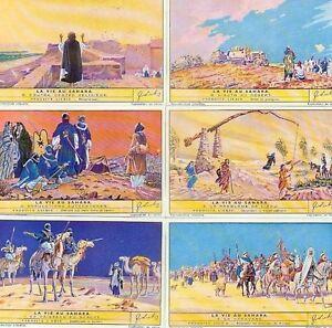 LIEBIG : S_1454 : 'Vie au sahara (la)