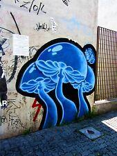 ART PRINT POSTER PHOTO GRAFFITI MURAL STREET MAGIC MUSHROOMS NOFL0254