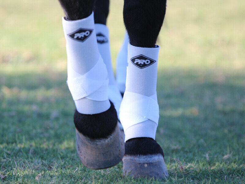Pro Orthopedic H20 rot Horse EQUINE  SUPPORT Stiefel Größe MEDIUM